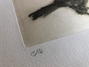 SPECIMEN - LIMITED EDITION INTAGLIO CHIN-COLLE'