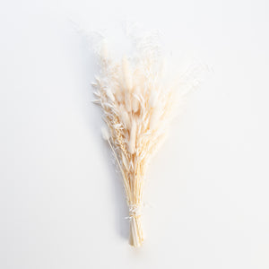Droogbloemen White small | Dried flowers Colored White small