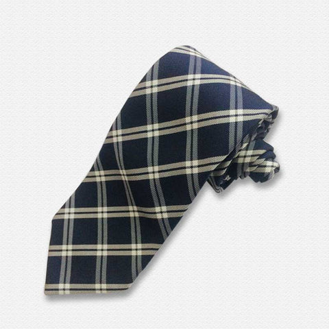 Blue & White Plaids Neck Tie