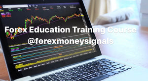 Forex Education Training Course - Money Trust Forex Signals