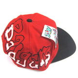 Vintage Wisconsin Badgers Wild Style Snapback Hat NWT