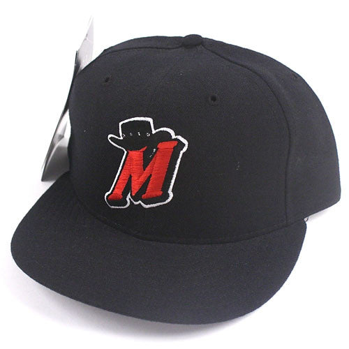 Vintage High Desert Mavericks Fitted Hat NWT