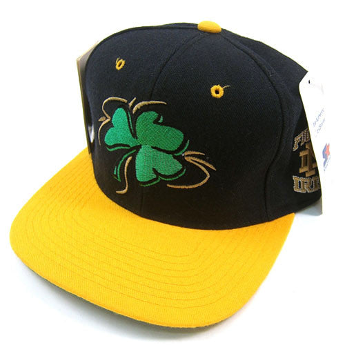 Vintage Notre Dame Image Collection Starter snapback hat NWT