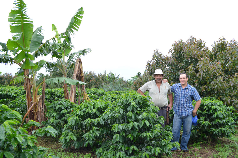 Marco Oviedo and his dad at Finca Sircof in Costa Rica