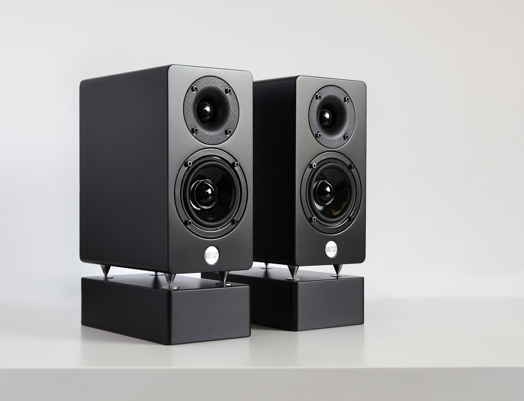 WRS MM2 (Mini Monitor 2 Way)