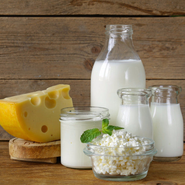 Food - Dairy Products