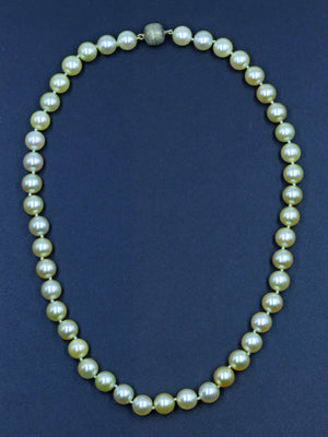 Vintage Golden South Sea Pearl Necklace, SOLD