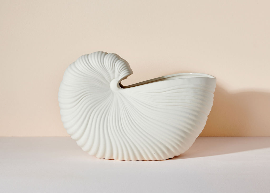 Shell Pot • PRE-ORDER DISPATCHING LATE NOVEMBER