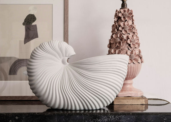 Shell Pot (PRE-ORDER Dispatching Late July)