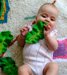 Natural Rubber Kale Teether