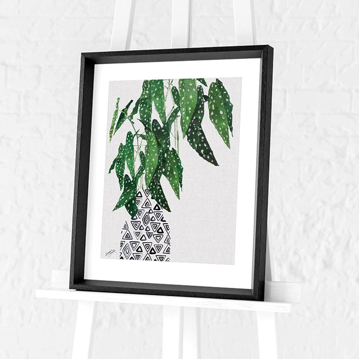 Polka Dot Begonia Plant by Summer Thornton | Framed Print