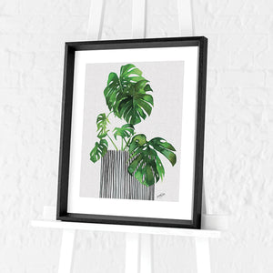 Swiss Cheese Plant by Summer Thornton | Framed Print