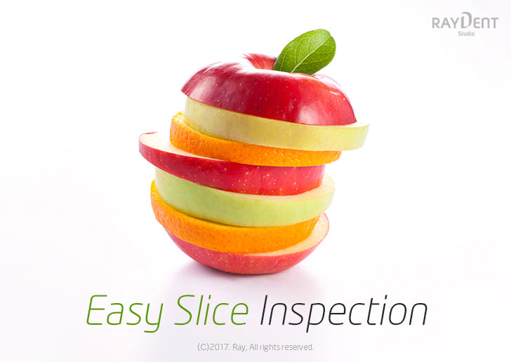 Slice Inspection