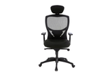 Venus Office Executive Chair with Midback Mesh Backrest and Headrest and Nylon Base and Casters Front View