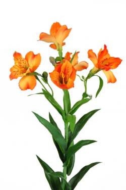 Artificial Alstroemeria Stem - Orange