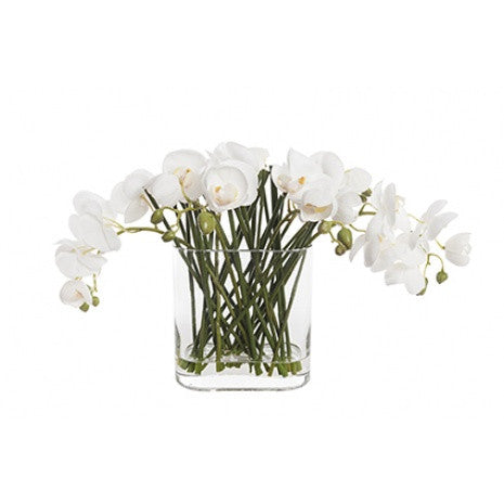 Artificial Flower Arrangement - Phalaenopsis Orchid in Tank Vase (30cm)