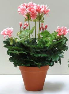 Artificial Geranium Plant, Pink, Potted