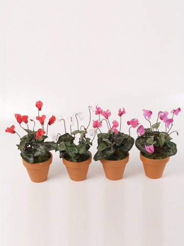 Artificial Cyclamen, Potted