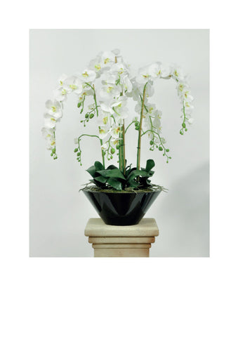 Artificial Orchid, Potted, 'Supreme', 96cm.
