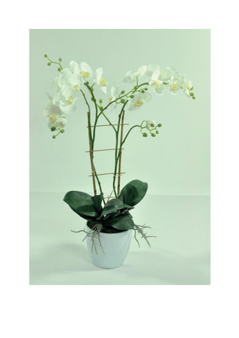 Artificial Orchid, Potted, Large Double Stem, White