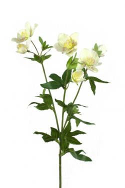 Artificial Hellebore / Christmas Rose Cream/Pink