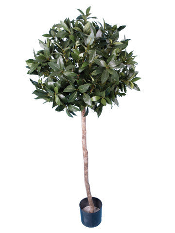 Artificial Bay Tree, 4ft/118cm.