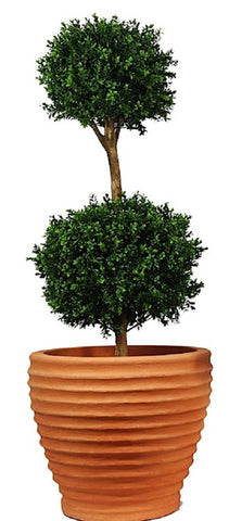 Artificial Topiary; 5 ft Buxus Double Ball Tree