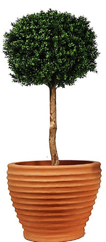 Artificial Topiary; Buxus Single Ball Tree, 5ft
