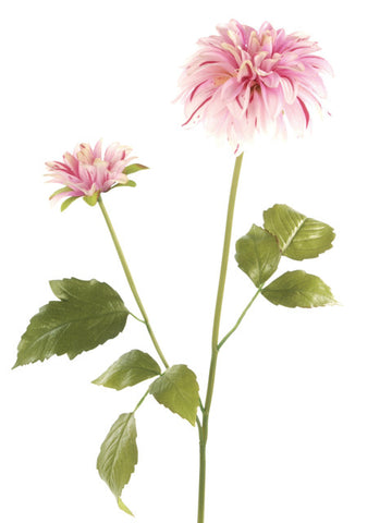 Artificial Dahlia, Cream/ Pink
