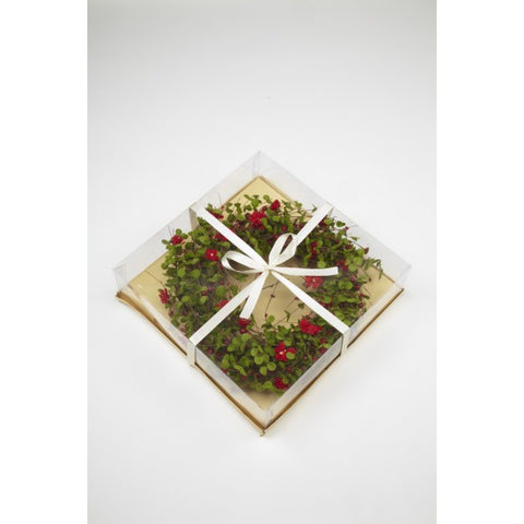 Christmas Wreath - Artificial Eucalyptus & Red Flowers