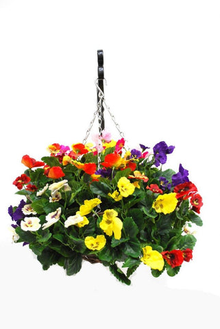 Copy of Artificial Hanging Basket, Pansy Ball, Multiple Colour Mix - Full mix