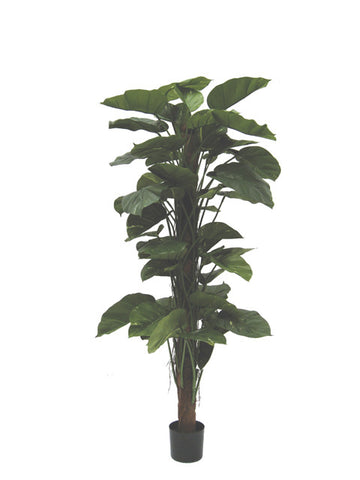 Artificial Giant Pothos Tree, 5ft/150cm