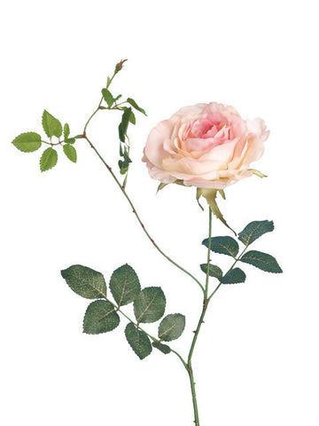 Artificial Rose, Full Bloom, Light Pink
