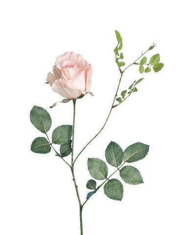 Artificial Rose, Short Stem 'Alice Rose' Light Pink