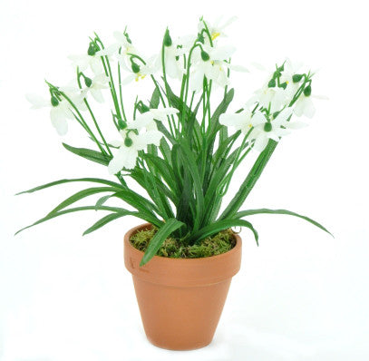 Artificial Snowdrops, Potted