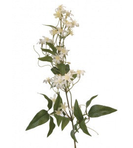 Artificial Wild Clematis Spray - White