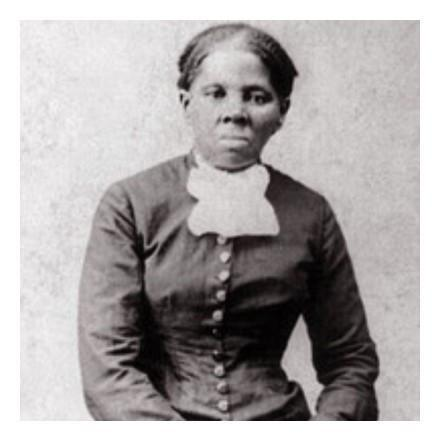 Harriet Tubman Collection