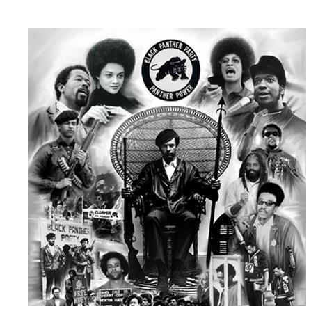 Black Panther Party Collection