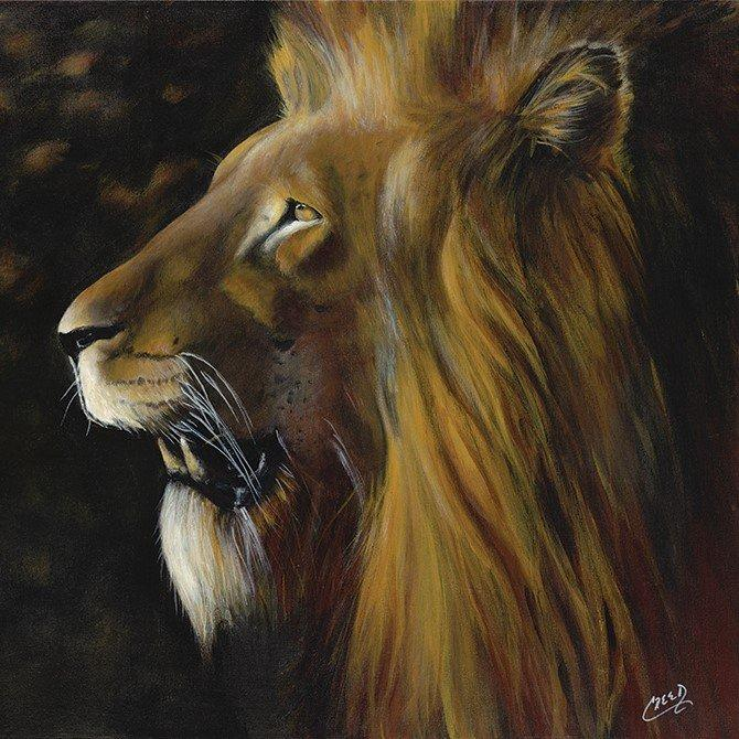 "Courage: African Lion by Cecil ""CREED"" Reed"