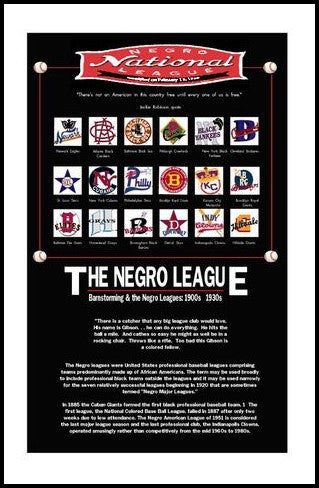 The National Negro Leagues by Julian Madyun