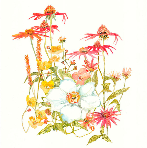 Echinacea, buttercups and Cosmo flowers painted by Danielle Morgan