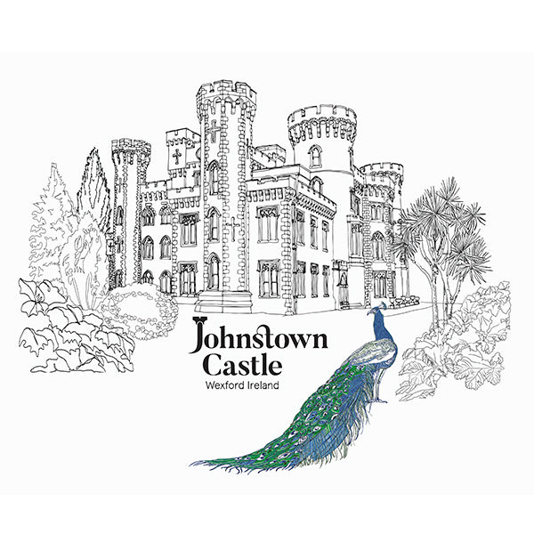 Final illustration of Johnston Castle by Danielle Morgan