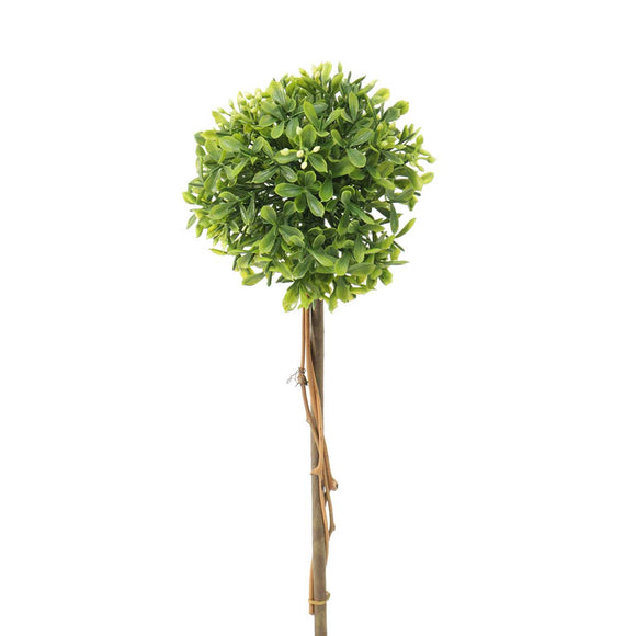 Mini Boxwood Topiary 4