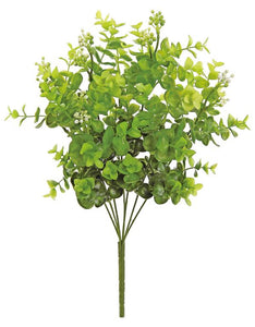 "SEEDING EUCALYPTUS X 7. 19"". TWO-TONE GREEN,"