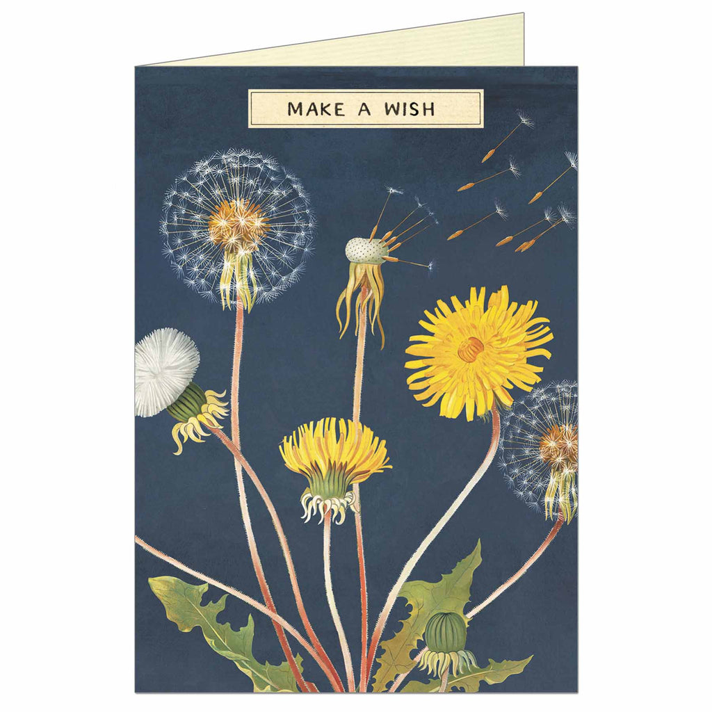 Make a Wish Greeting Card