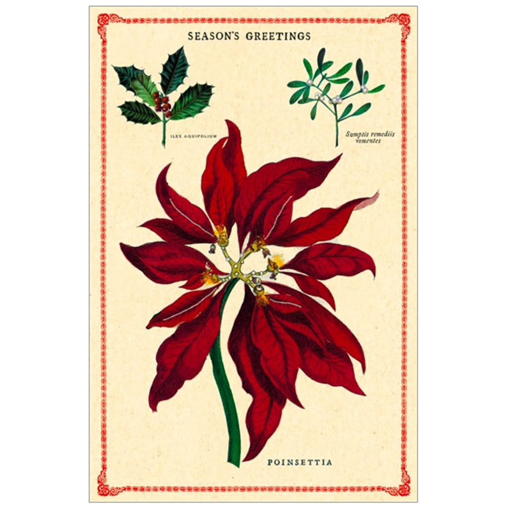 Christmas Botanical Vintage Postcards Set