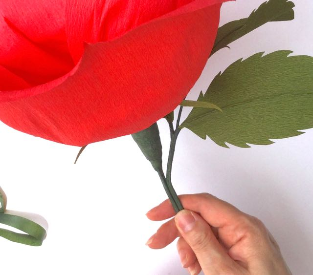 Giant Crepe Paper Rose Kit