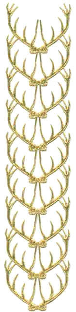 Gold_Dresden_Antlers