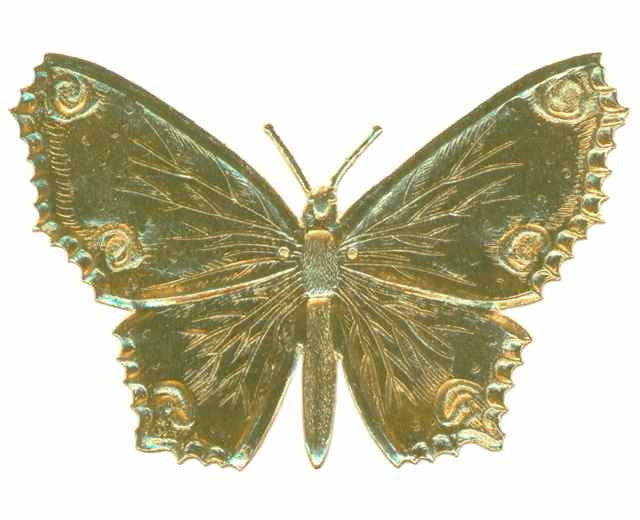 Gold_Dresden_Butterfly