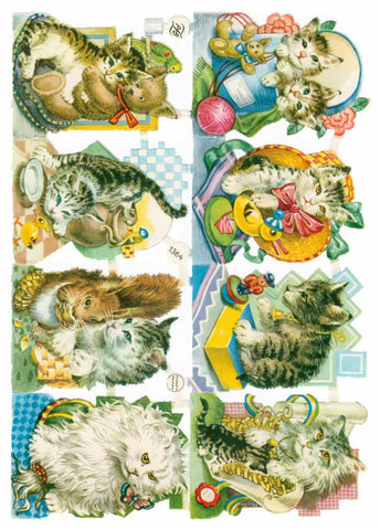 Scrapbook Pictures, Baby Cats